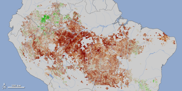 Vegetation loss in the Amazon (2011).